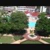 Walt Disney World: Disney's Grand Floridian Resort & Spa