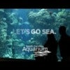 Let's Go Sea - South Carolina Aquarium Commercial
