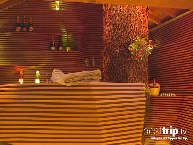 Video: Tree-Top Champagne Bar in Champagne, France