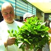 Video: Seabourn Experience: Shopping with the Chef at the Saigon Market
