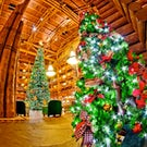 Christmas in Branson is a Lifestyle Tours Annual Tradition