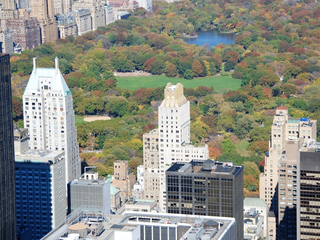 Central Park & Fifth Avenue