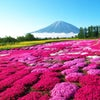 11 days Splendid Japan plus Hokkaido