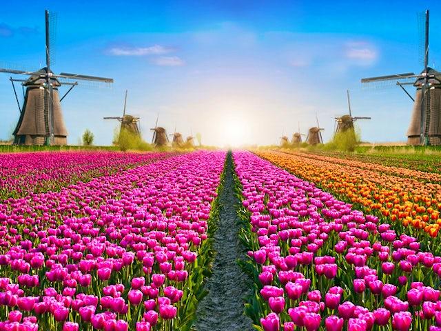 Friday, April 19, Amsterdam