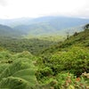 Tropical Costa Rica: Optional 3-Night Jungle Adventure Post Tour Extension