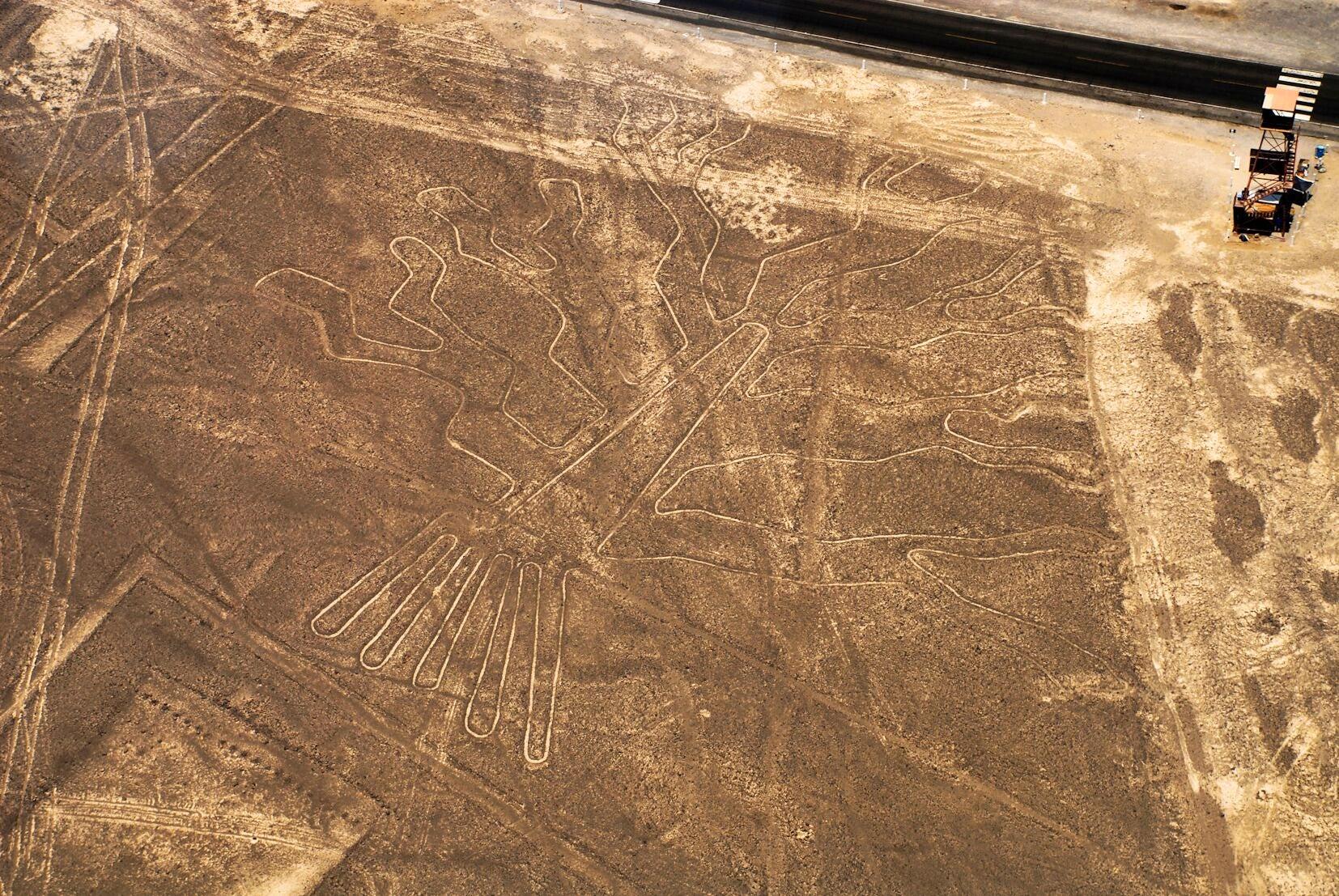 Nazca – Casa Andina Standard