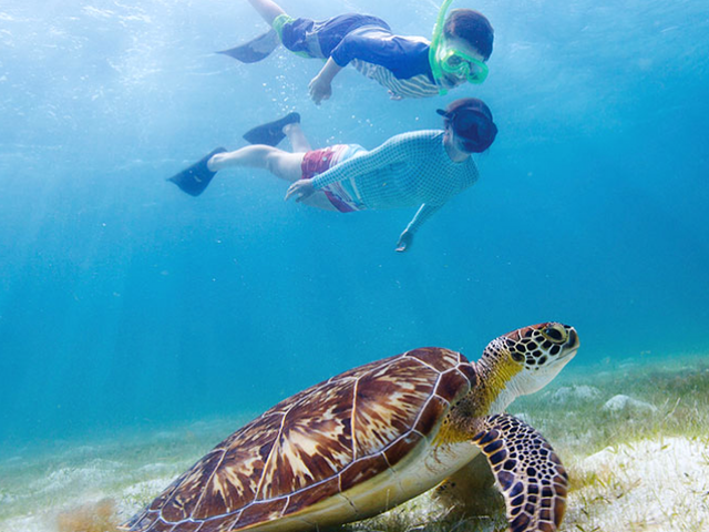 Abercrombie & Kent Luxury Family Australia Vacation - Kids Under 17 Save $500