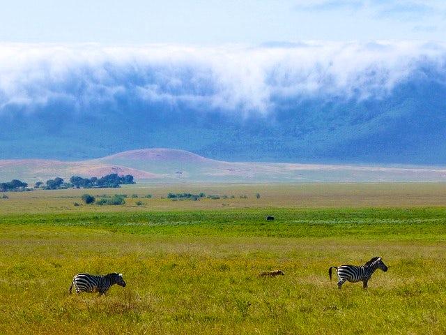 Thursday, July 4, Ngorongoro
