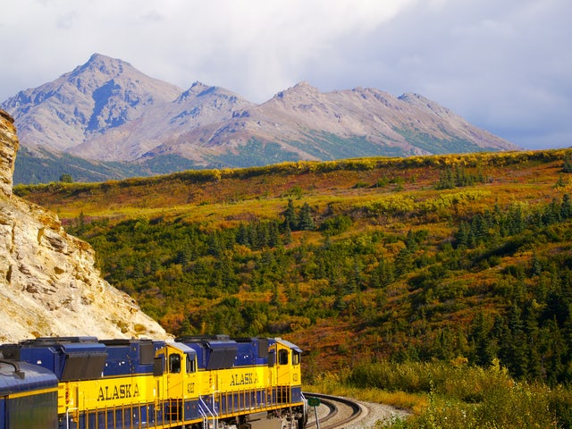 Tuesday, August 13, Denali National Park