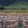 andbeyond_ngorongoro-crater-lodge-1rs_2.jpg