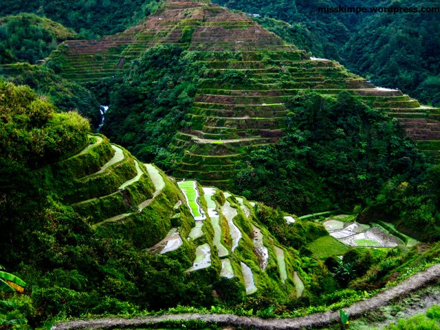 A great handmade, Banaue Rice Terraces