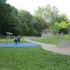 Parc_du_Mont-Royal_005.jpg