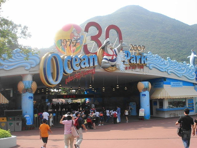 Bring Your Kids in a Family Trip to Ocean Park Hong Kong