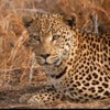 Namibia and Botswana Photography Safari