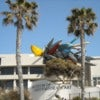 Ocean Beach & La Jolla Beach 115.JPG