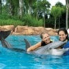 DiscoveryCove.jpg