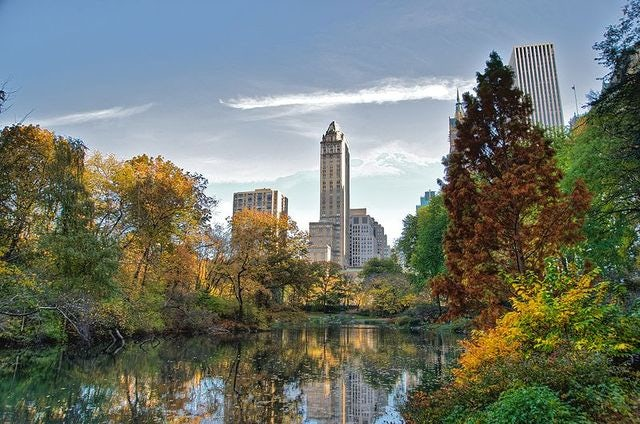 Top Things to Do at the NYC Central Park