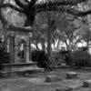 Bonaventure_Cemetery_-_Savannah,_GA.jpg