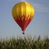 Balloons_aloft_2.jpg