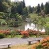 Seattle_Japanese_Garden.jpg