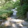 Japanese_Garden_-_Seattle_-_path_02.jpg