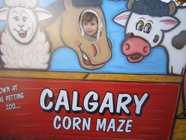 Challenge your navigation skills in a maze of corn at Calgary Corn Maze