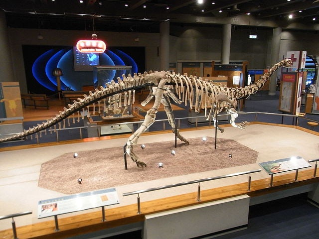 Journey through the Evolution of Dinosaurs at the Royal Tyrrell Museum