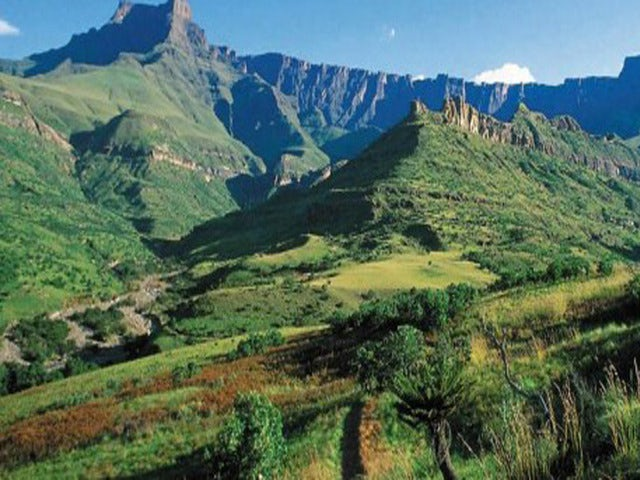 See the Stunning Scenery on a Full Day Drakensberg World Heritage Tour
