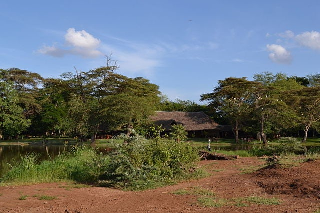 "Head to Kenya to See Africa's ""Big Five"""