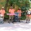 Steel_drum_band,_Disney's_Animal_Kingdom.JPG