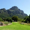 Kirstenbosch_-_View_from_the_Botanical_Gardens.jpg