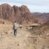 1280px-Mount_Sinai_Trekking.jpg