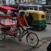 Old_Delhi_rickshaw_2011.JPG