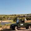 Afternoon Kruger National Park Game Drive_1.jpg
