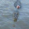 Jumping Crocodile Cruise_1.jpg