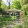 Monet's Garden Bike Tour_2.jpg