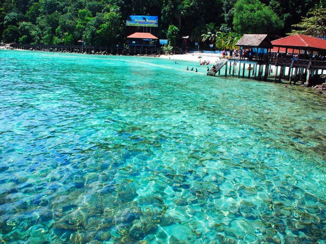 Explore an Underwater World on a Pulau Payar Marine Park Snorkeling Tour