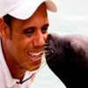 World Sea Lion Encounter_1.jpg