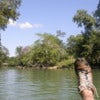 Tubing_down_the_Mopan_river_in_Bullet_Tree_Falls.JPG