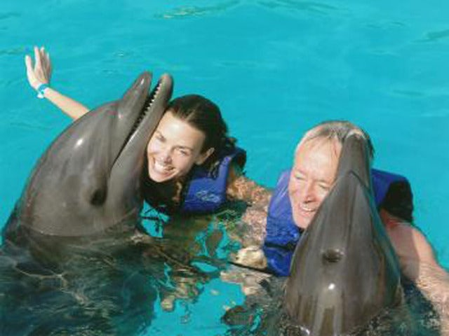 Communicate with a Dolphin on the Nuevo Vallarta Dolphin Swim Experience