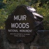 Muir_Woods_National_Monument_08.jpg