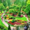 Butchart Gardens Tour_1.jpg