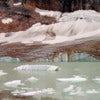 Mount Edith Cavell Glacier [2].jpg