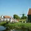 Zaanse Schans Windmills ½-Day Trip_4.jpg