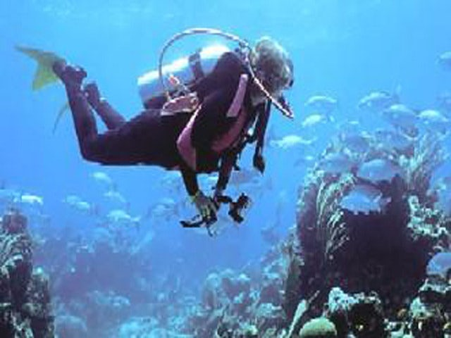 Practice your Diving Skills with a Scuba Diving Lesson in Bermuda