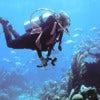 scuba_diving_lesson_in_bermuda_3.jpg