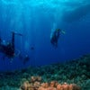 scuba_diving_lesson_in_bermuda_2.jpg