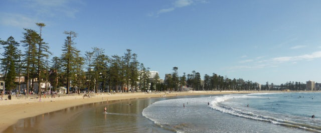 Relax on the Sandy Shores of Manly Beach