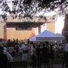 New Orleans festival.jpg
