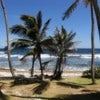 Best of Barbados Land & Sea Tour_2.jpg